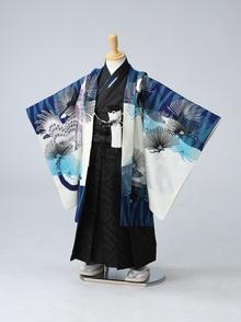 JS紺地タカに亀甲紋 【着物:51830028】 【袴:02025707】